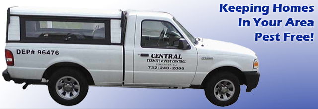 Pest Control Exterminating Toms River New Jersey